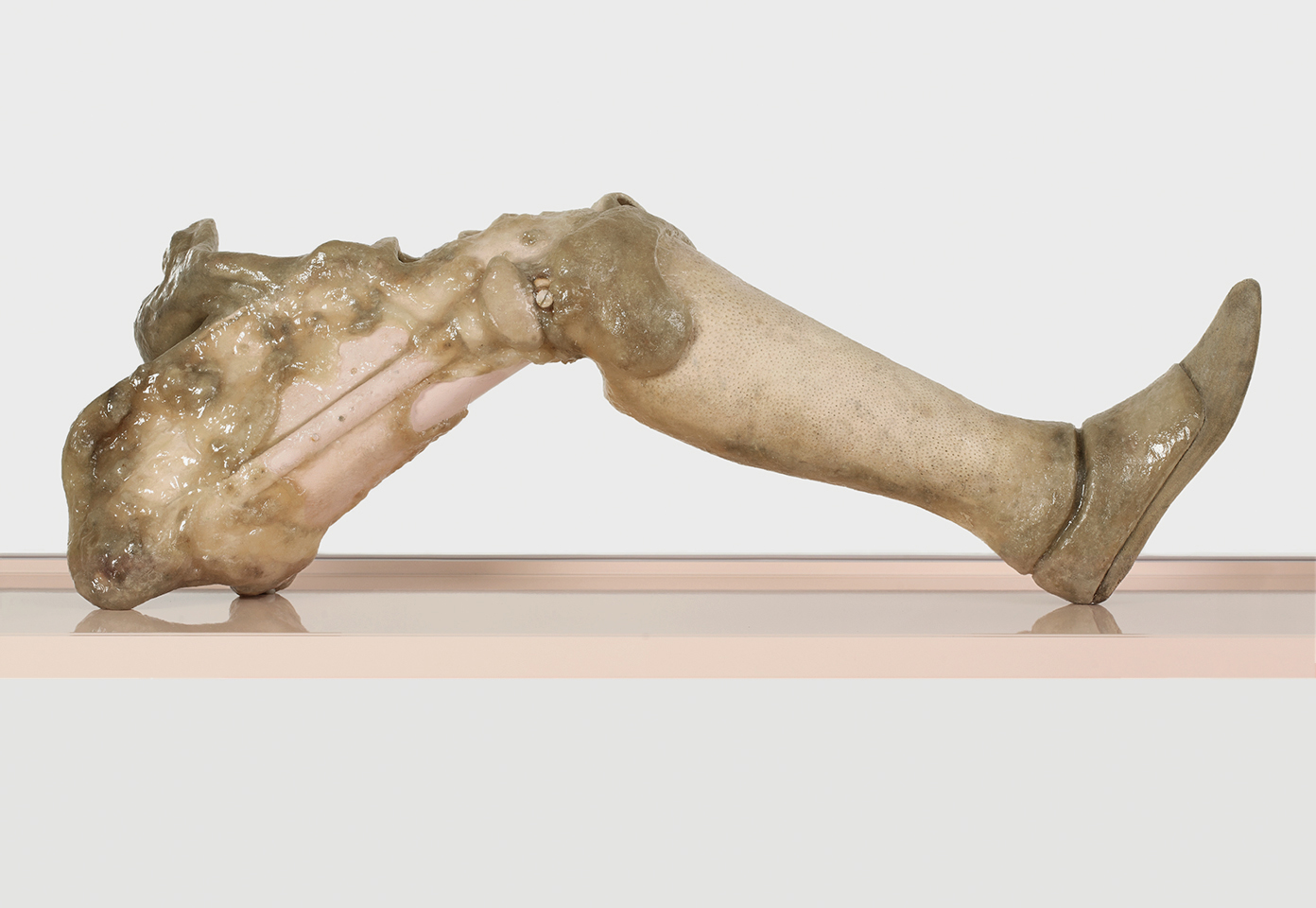 ONANIA / Aetiology Unknown 18 (detail) / 2012 / 160 x 50 x 120 cm / prosthesis, fat, leather, cosmetics, polyvinyl acetate, vitrine