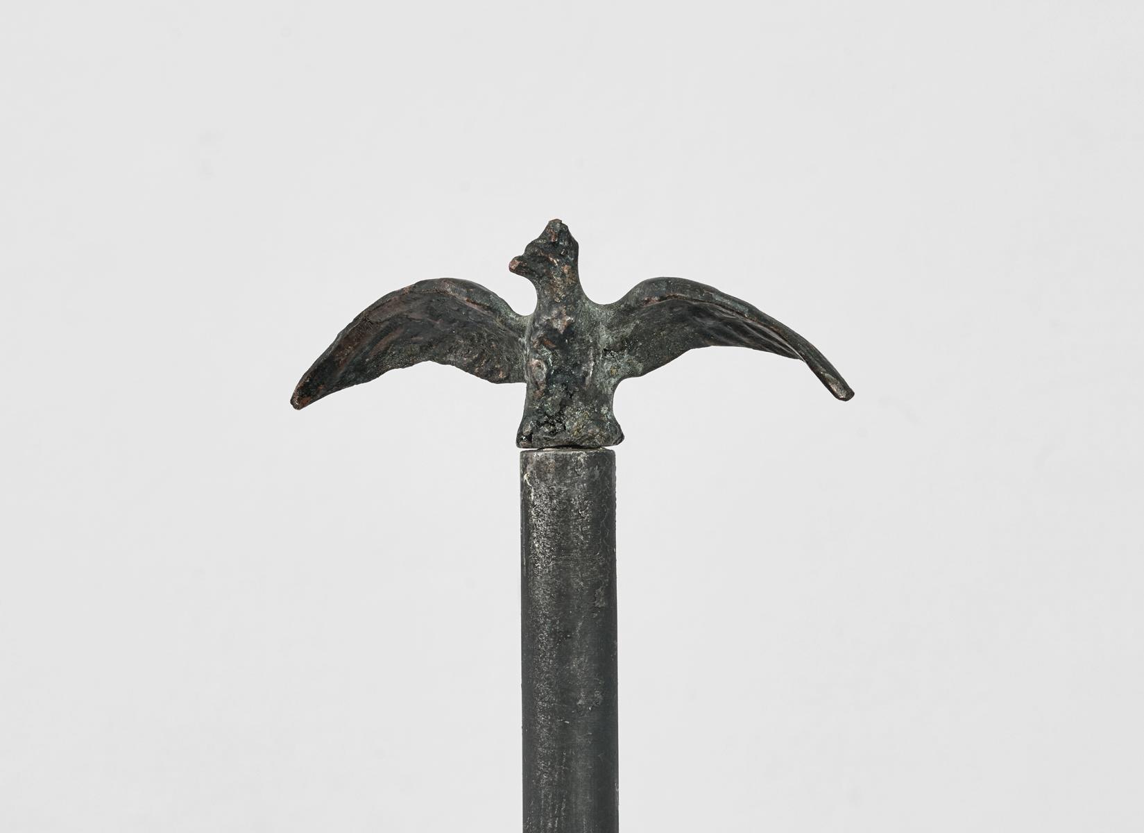 ACTUS PURUS / Eagle (detail) / 2016 / 37 x 195 x 37 cm / eagle figure, stand