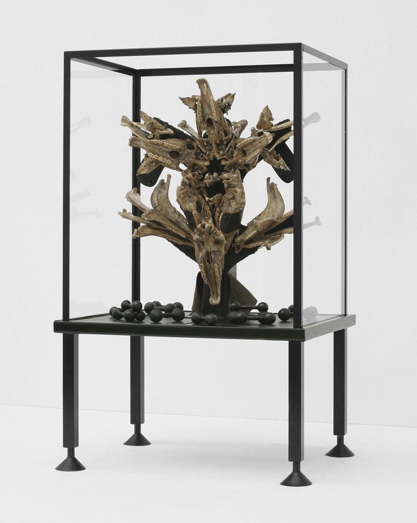POSSESIA / Triumphant /  2010 /120 x 250 x 90 cm / horse skulls, pig skulls, wood, leather, steel, weights, fur, soil,  resin, enamel