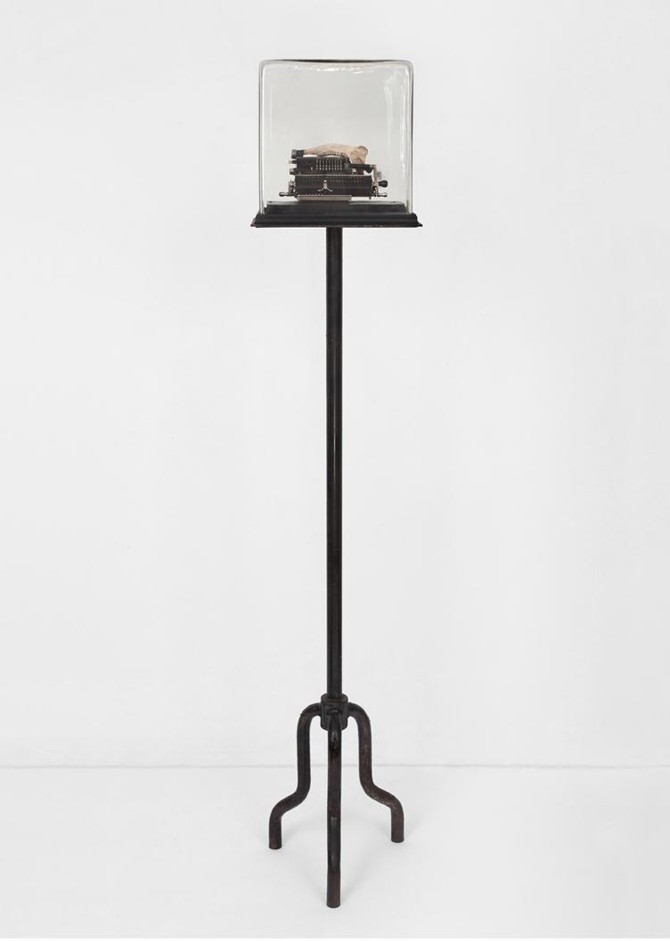 POSSESIA / Implement VI  / 2013 / 33 x 23 x 160 cm /  counting machine, steel, aquarium, stool stand, soil, animal mandible