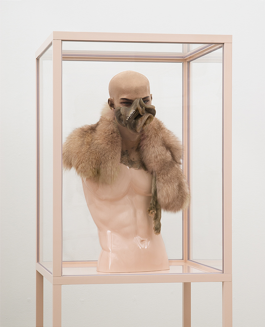 ONANIA / Aetiology Unknown 23 / 2012 / 60 x 190 x 60 cm / fat, leather, fur, mannequin, animal jaws, enamel, cosmetics, polyvinyl acetate, vitrine