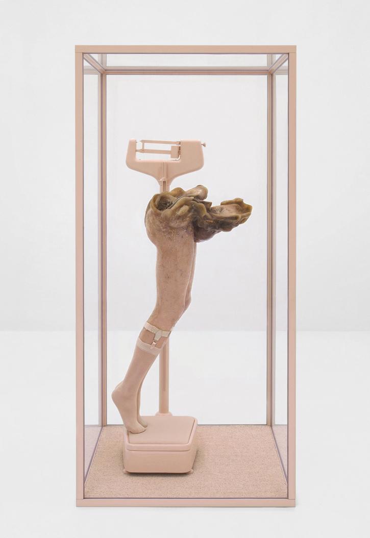 ONANIA / Aetiology Unknown 39 / 2011 / 90 x 185 x 90 cm /  fat, leather, fur, mannequin, socks, scales, animal jaws,  cosmetics, polyvinyl acetate, enamel, vitrine